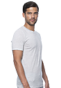 Unisex Triblend Short Sleeve Tee TRI ASH Back