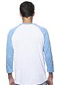 Unisex Triblend Raglan Baseball Shirt  Back