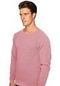 Unisex Triblend Fleece Raglan Crew Sweatshirt  Back