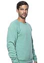 Unisex Triblend Fleece Raglan Crew Sweatshirt TRI KELLY Back