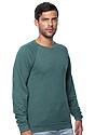 Unisex Triblend Fleece Raglan Crew Sweatshirt TRI PINE Back