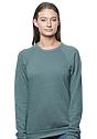 Unisex Triblend Fleece Raglan Crew Sweatshirt TRI PINE Front2