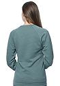 Unisex Triblend Fleece Raglan Crew Sweatshirt TRI PINE Back2