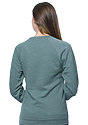 Unisex Triblend Fleece Raglan Crew Sweatshirt  Back2