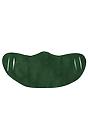 Unisex Rib Spandex Face Mask 50/50 PINE Front